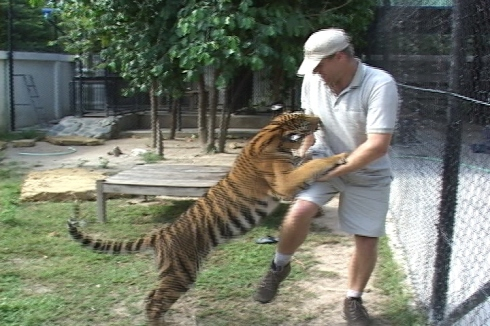 Zolt with Tiger