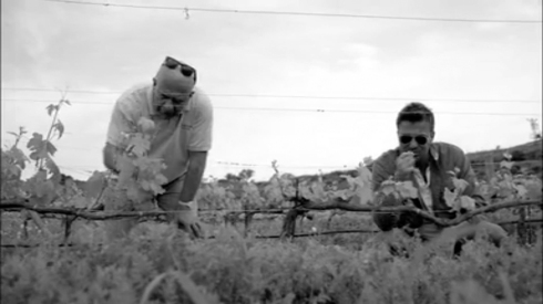 Fig 27 - Rasheed Sali and Jack Maxwell at a resurrected grape farm in Turkey